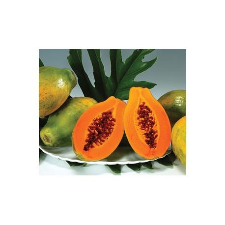 Red Papaya (8pcs)