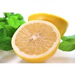 大玉ホワイトグレープフルーツ (LLsize) 27~35玉