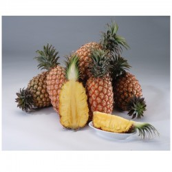Ripe Golden Pineapple