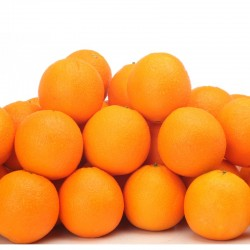 Large Navel Orange (LL size) 56pcs