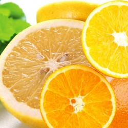 ホワイトグレープフルーツ9玉&オレンジ10玉 詰合せ