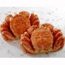 Boiled Hokkaido Horsehair Crab (400g x 2)