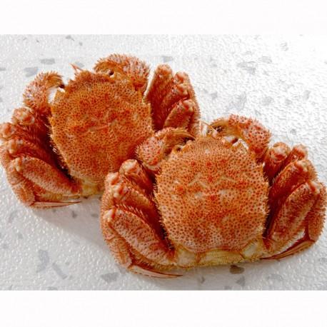 Boiled Hokkaido Horsehair Crab