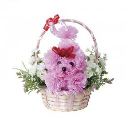 Photocatalyst Carnation Pink Poodle