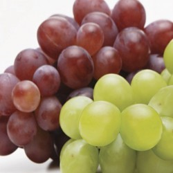 2 Kinds of Seedless Grape 2kg each (Late OCT~DEC)