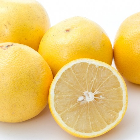 White Grapefruits (L size) 20pcs