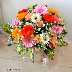 Arrangement Gerbera Mix