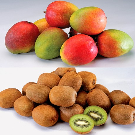 Mango & Kiwi Fruits Set