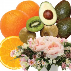 Photocatalyst Mini Arrange & Mini Fruits Set