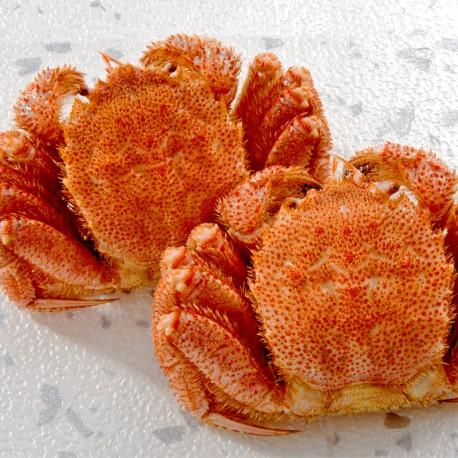 Boiled Hokkaido Whole Horsehair Crab