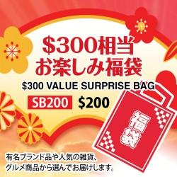 $300 Value Surprise Bag