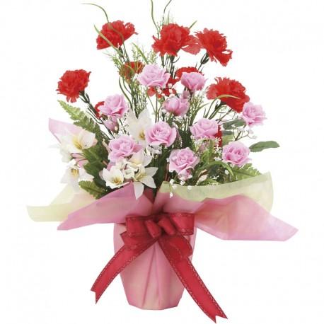 Photocatalyst Mix Carnation