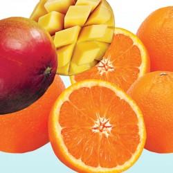 マンゴーとオレンジのミニセット
