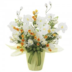 Photocatalyst Sympathy Arrangement White