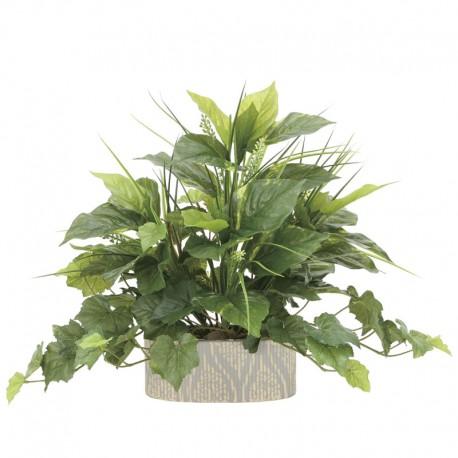 Photocatalyst Mixed Plants