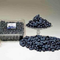 Oregon Blueberry 900g (JULY)