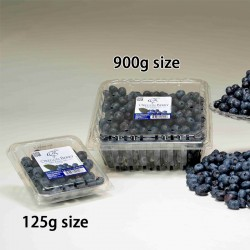 Oregon Blueberry 900g (JULY)
