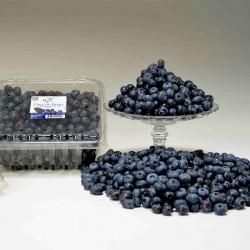 Oregon Blueberry 900g x 2 (JULY)