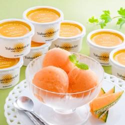 Hokkaido Yubari Melon Ice Cream (NOV~DEC)