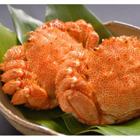 Hokkaido Horsehair Crab x 2