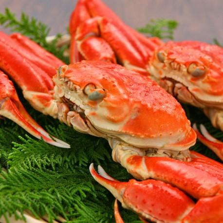 Hokkaido Snow Crab x 2