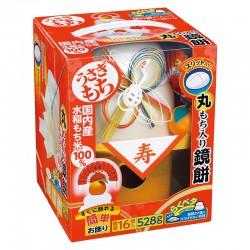 Kagami Mochi (with Round Mochi)