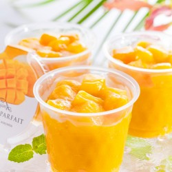 GINZA LES ROSIERS EGUZKILORE Mango Pudding (JUN~AUG)