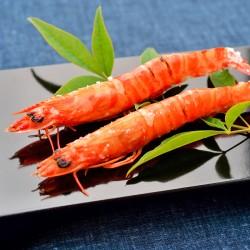 Amakusa Kuruma Shrimp (Frozen)