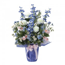 Photocatalyst Sympathy Arrangement Blue