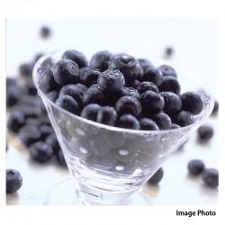 生鮮ブルーベリー(5パック)