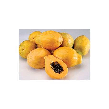 Large Papaya (8~10pcs)