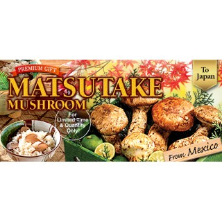 2019 Mexican Matsutake Available for Limited Time!!